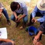 Assessing-Soil-texture-NSW