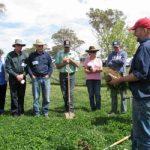 Soil-Health-Workshop-CT-landcare-NSW-web-350x250